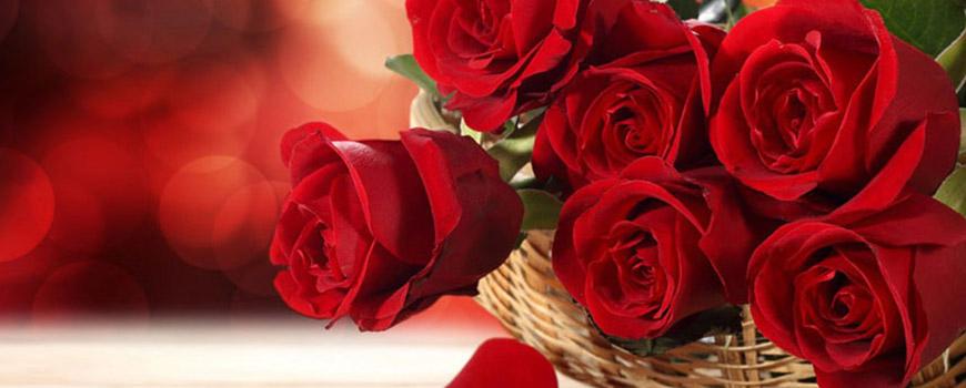 زیبا ترین گل های دنیا را خواهم آورد